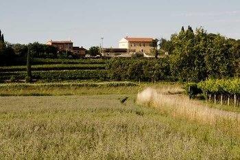 Agriturismo Panorama - фото 19