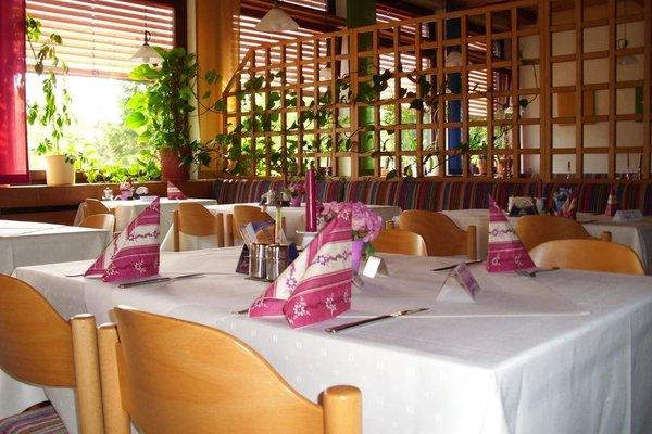 Landhotel Wasgau - фото 12