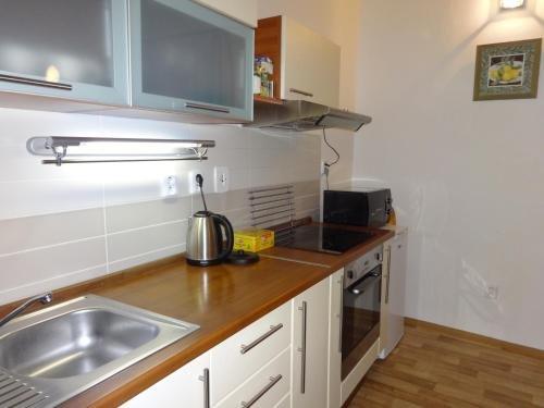 Apartman V Podzamci - фото 5
