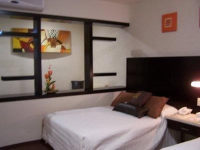 Hotel Aguascalientes - фото 3