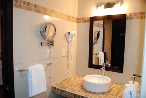 Hotel Aguascalientes - фото 7