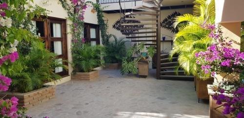 Posada de las Flores La Paz - фото 21