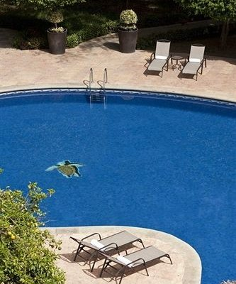 Hyatt Regency Villahermosa - фото 20