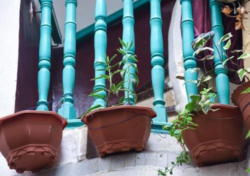 Essaouira Youth Hostel & Social Travel - фото 22