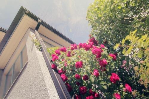 Apartment Hotel Kuukkarin Kortteeri - фото 21
