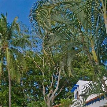 Isla Dorado - фото 10