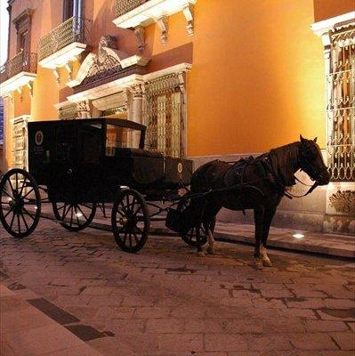 Hotel Museo Palacio de San Agustin - фото 22