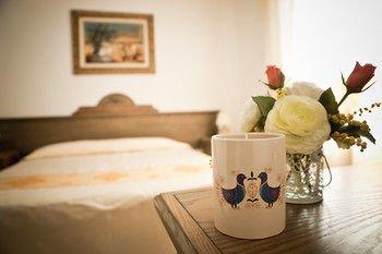 Hotel Artu - фото 1