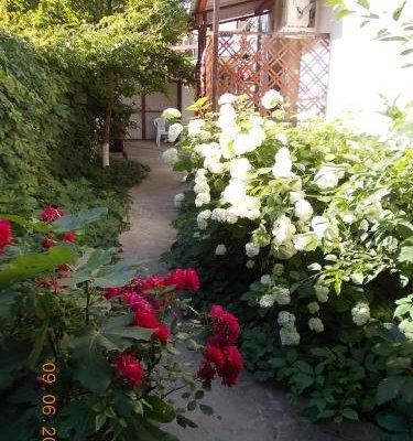 Domik u Plyazha Guest House - фото 20