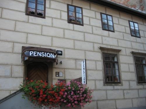 Pension Archa - фото 3