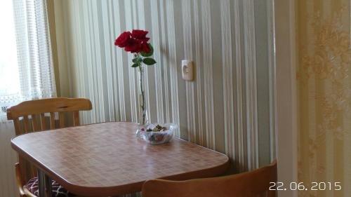 U Viktora Apartments - фото 12