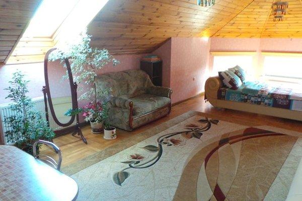 U Viktora Apartments - фото 9