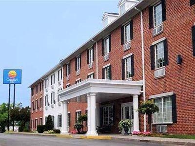 Comfort Inn Sarnia - фото 21