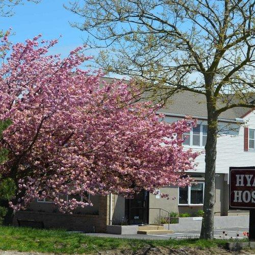 Photo of Hyannis Host Inn
