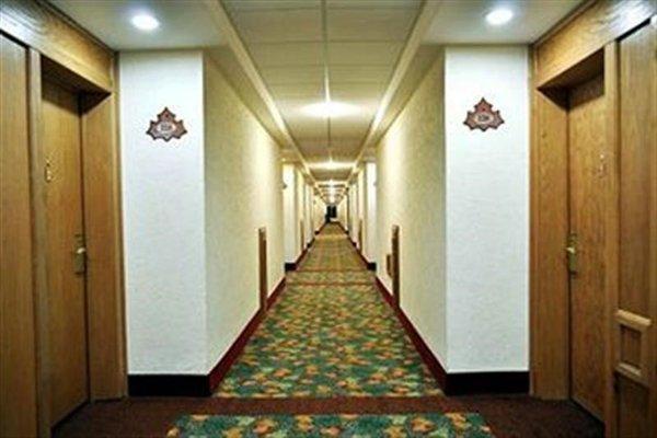 HOTEL SICOMORO - фото 14