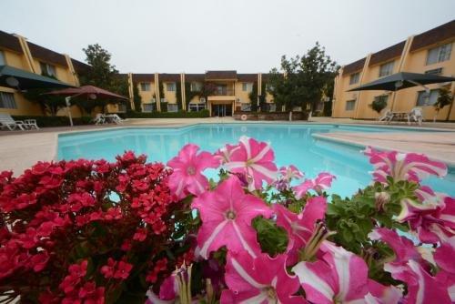 HOTEL SICOMORO - фото 20