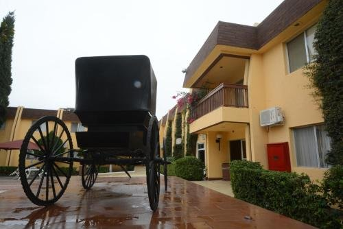 HOTEL SICOMORO - фото 22