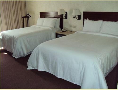 Hotel Gobernador - фото 4