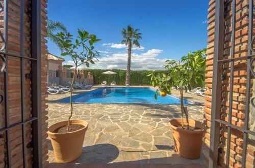 Villa Conmigo Bed & Breakfast - фото 50