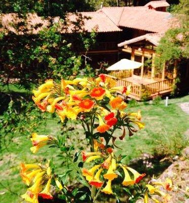 Sacred Dreams Lodge - фото 19