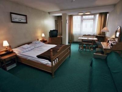 Hotel Gromada Zakopane - фото 2