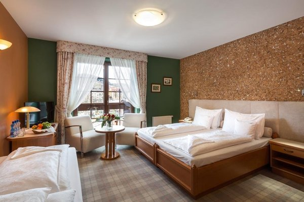 Hotel Alpejski - фото 2