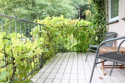 Hotel Winneburg - фото 21