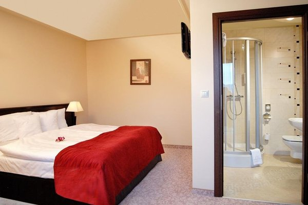 Hotel Kudowa Prestige SPA - фото 2