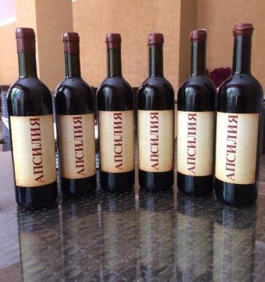 Apsiliya Guest House - фото 7