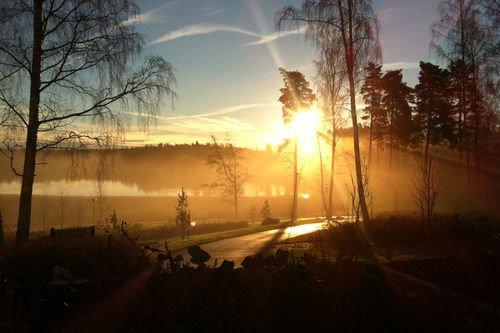 Langvik Congress Wellness Hotel - фото 23