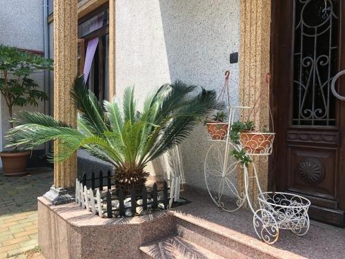 Irakli Guest House - фото 5