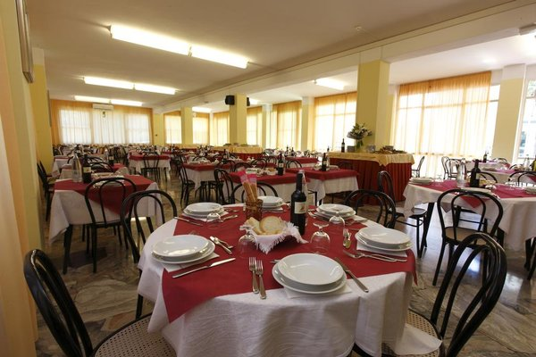 Hotel Vannini - фото 9