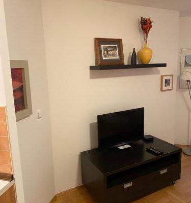Apartment Florenc - фото 7