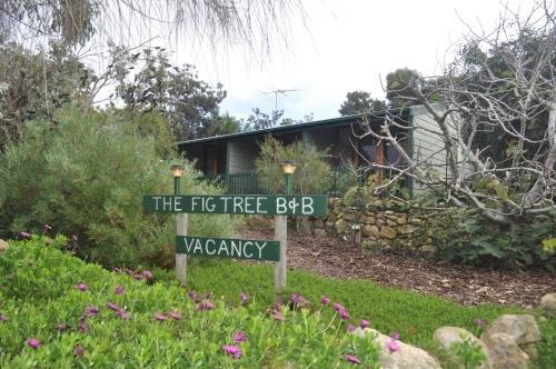 The Fig Tree B&B - фото 17