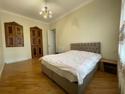 Shveli Apartment - фото 10
