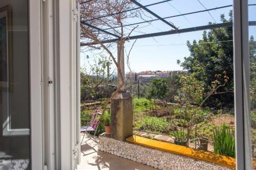 Apartments Ljubimir - фото 20