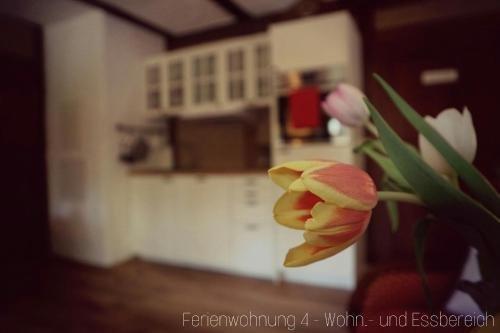 Apartment Grubenhaus20 - фото 7