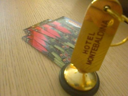Hotel Montebaldina - фото 17
