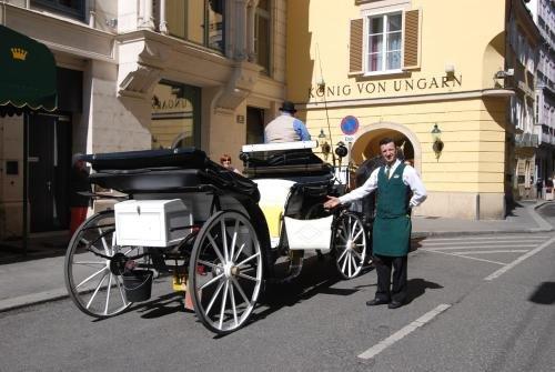 Hotel Konig von Ungarn - фото 22