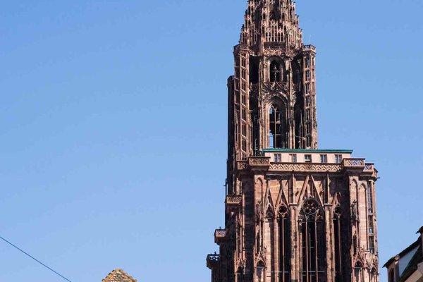 ibis Strasbourg Sud La Vigie - фото 23