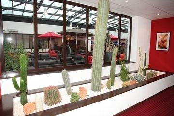 Zenia Hotel & Spa - фото 12