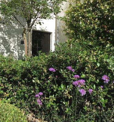 B&B The Herring's Residence - фото 5