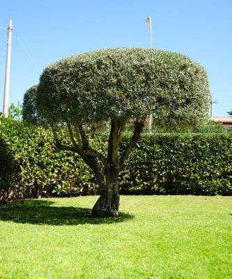 Villa Arenella Siracusa - фото 21