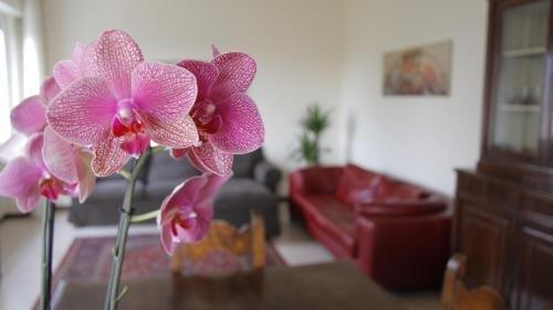 Casa Farinati - фото 9