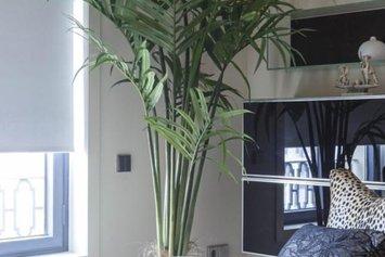 Apartment BookBarcelona