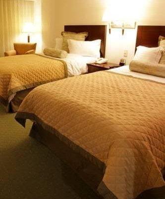 Holiday Inn Monterrey Valle - фото 1