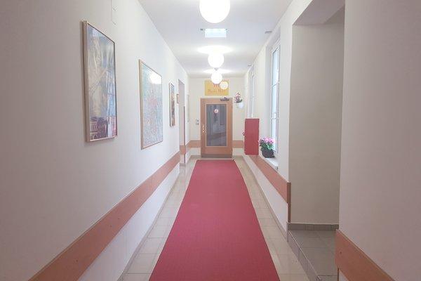 Hotel Haydn - фото 19