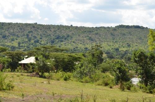 Exploreans Mara Rianta Camp - Все включено - фото 16
