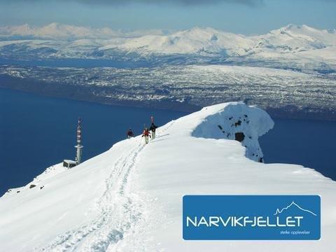 Best Western Narvik Hotel - фото 19