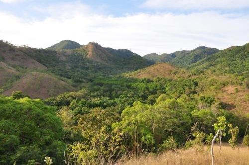 Busuanga Island Paradise - фото 18